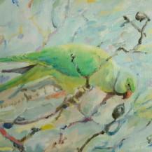 Parakeet Mate in Tree
