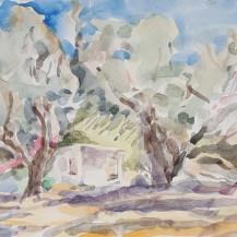 Wind In the Trees, Crete